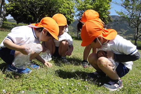 脇山保育園 保育内容について
